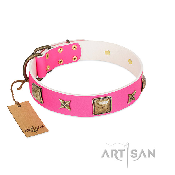 Full grain leather dog collar of top rate material with remarkable studs