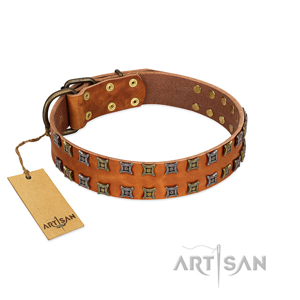 Gentle to touch natural leather dog collar with decorations for your four-legged friend