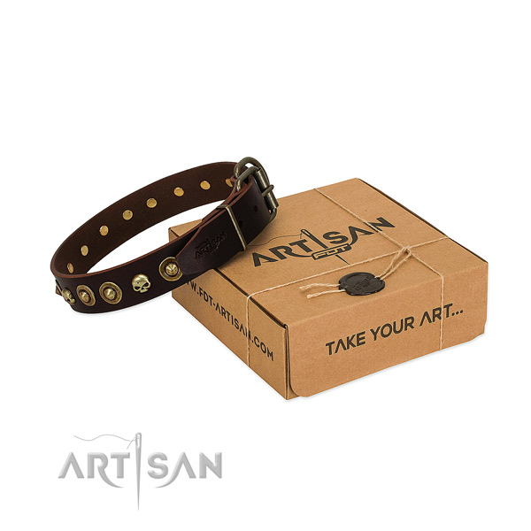 Natural leather collar with exceptional studs for your pet