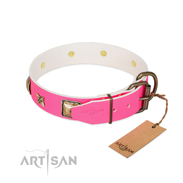 Strong buckle on leather collar for everyday walking your dog
