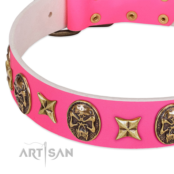 Full grain leather dog collar with extraordinary adornments