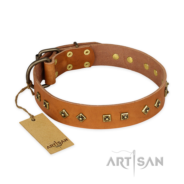 Embellished natural leather dog collar with rust resistant D-ring