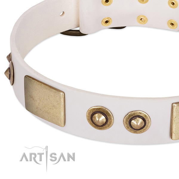 Corrosion proof hardware on leather dog collar for your pet