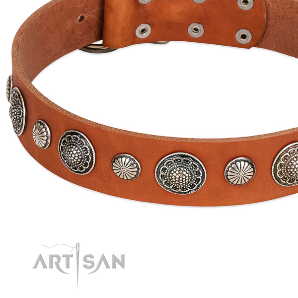 Full grain natural leather collar with reliable buckle for your beautiful four-legged friend