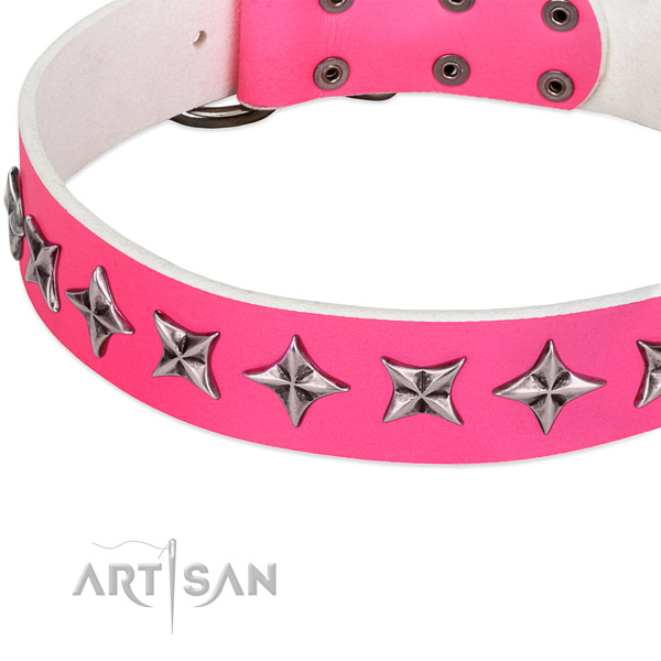 Stylish walking embellished dog collar of reliable full grain leather