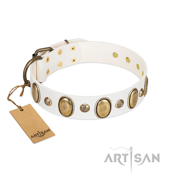 Full grain natural leather dog collar of soft material with awesome studs