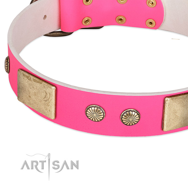 Rust-proof buckle on natural leather dog collar for your dog