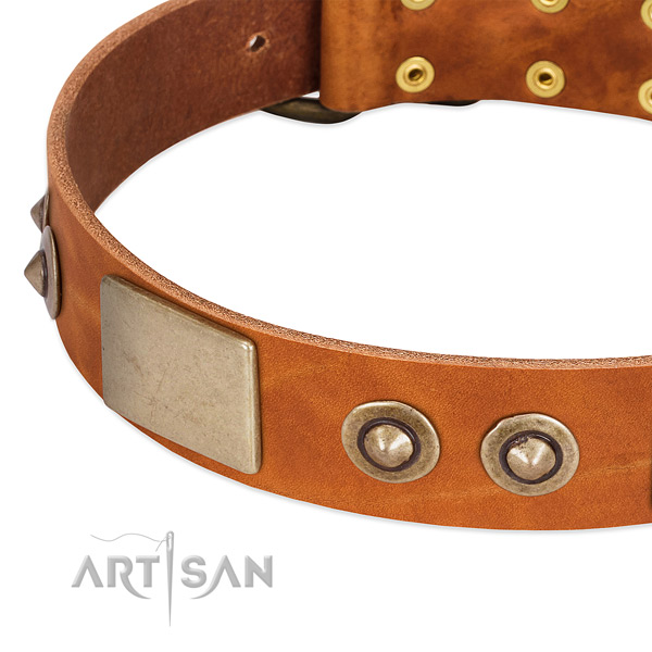 Reliable adornments on leather dog collar for your canine