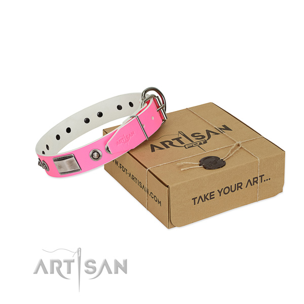 Stylish dog collar of leather with studs