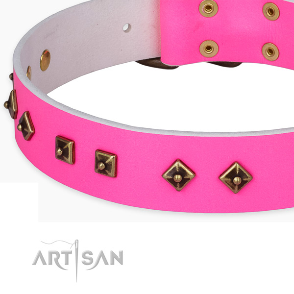Fashionable natural leather collar for your lovely four-legged friend