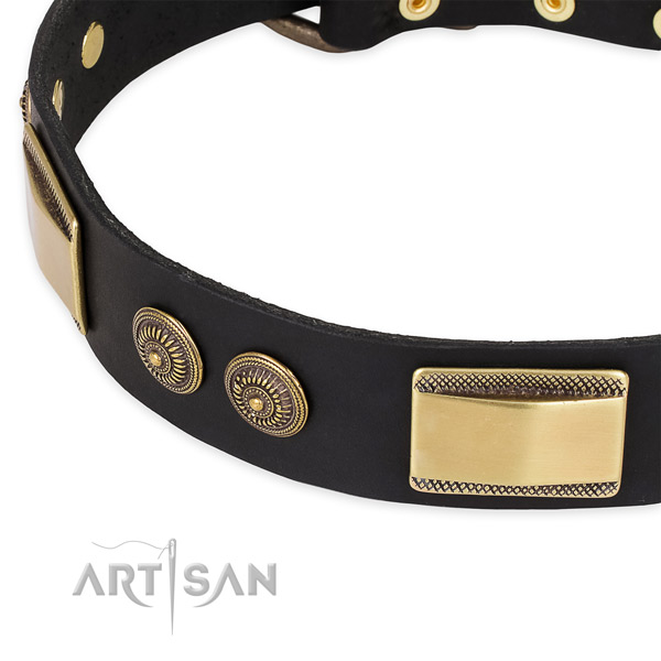 Exquisite full grain leather collar for your beautiful dog