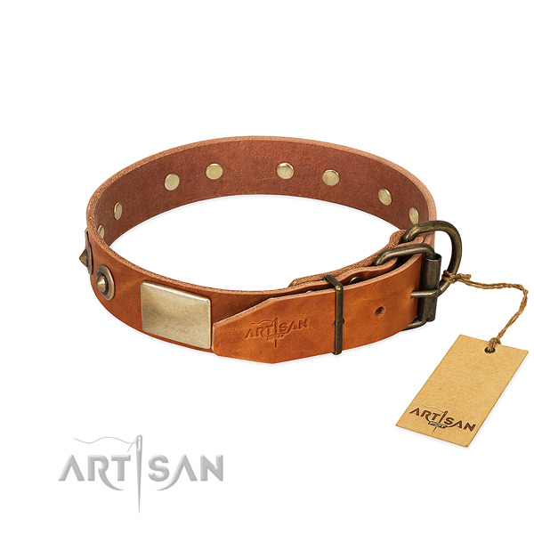Durable fittings on basic training dog collar