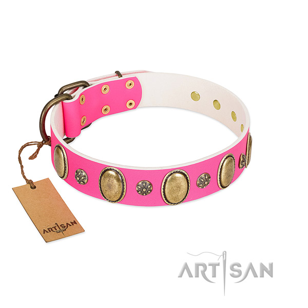 Strong full grain natural leather dog collar with reliable fittings