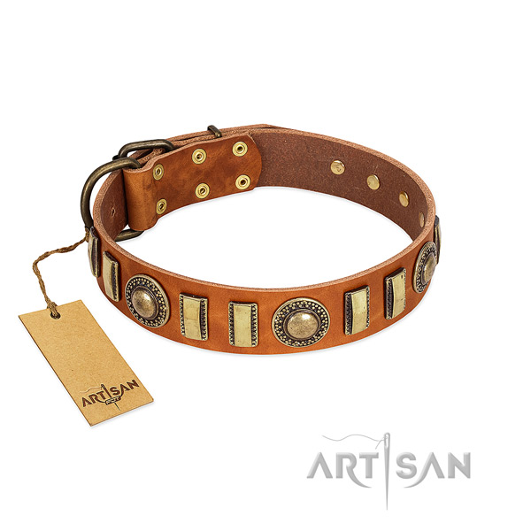 Stunning full grain natural leather dog collar with durable D-ring