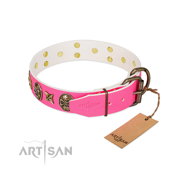 Rust-proof hardware on full grain genuine leather collar for everyday walking your pet