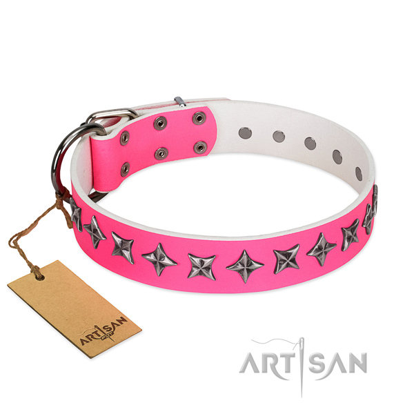 Top quality full grain leather dog collar with trendy adornments