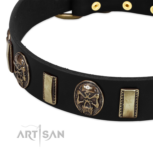 Rust-proof embellishments on leather dog collar for your doggie