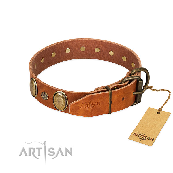 Stylish walking top notch full grain natural leather dog collar