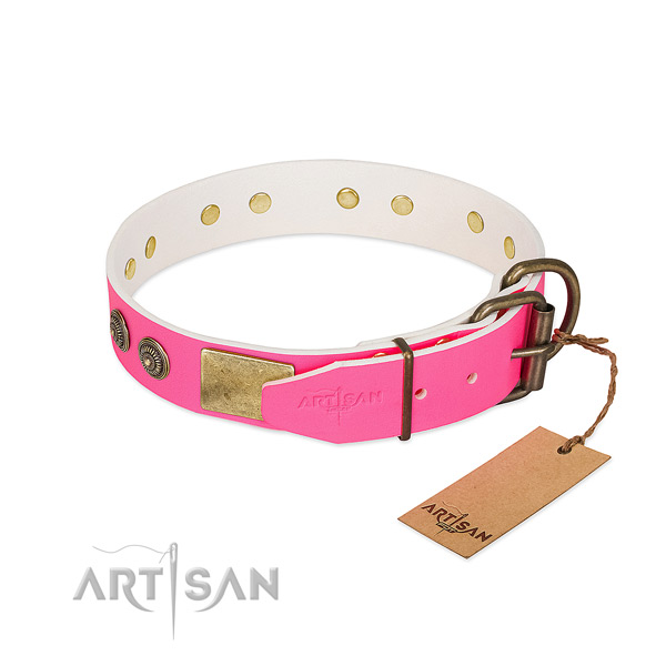 Durable hardware on genuine leather collar for fancy walking your doggie