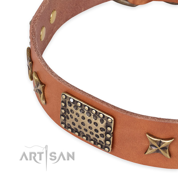 Full grain leather collar with reliable traditional buckle for your lovely pet