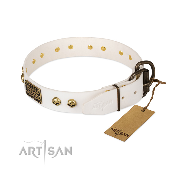 Easy wearing full grain leather dog collar for everyday walking your canine