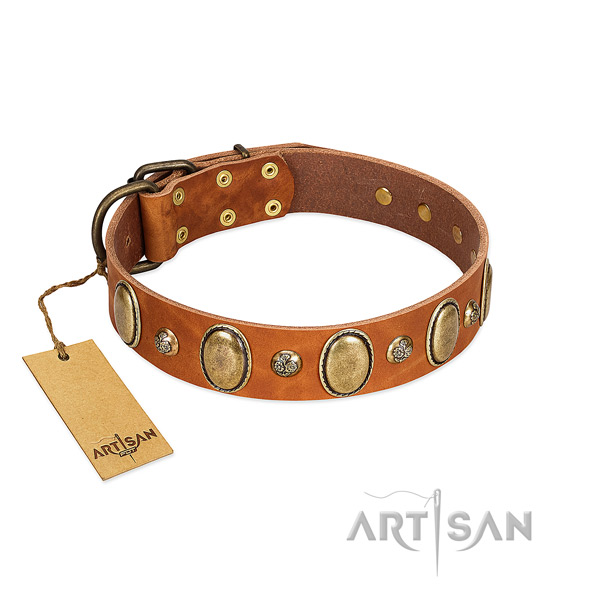 Leather dog collar of soft material with amazing adornments
