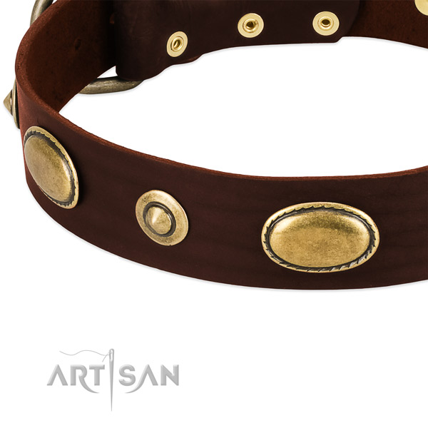 Rust-proof buckle on natural leather dog collar for your four-legged friend