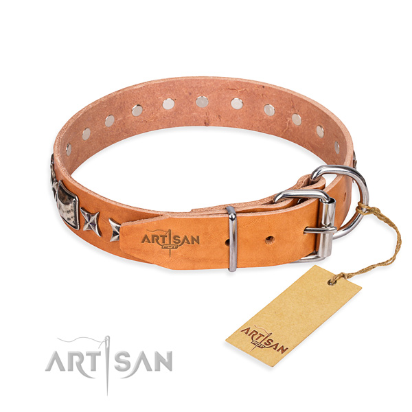 High quality studded dog collar of full grain leather
