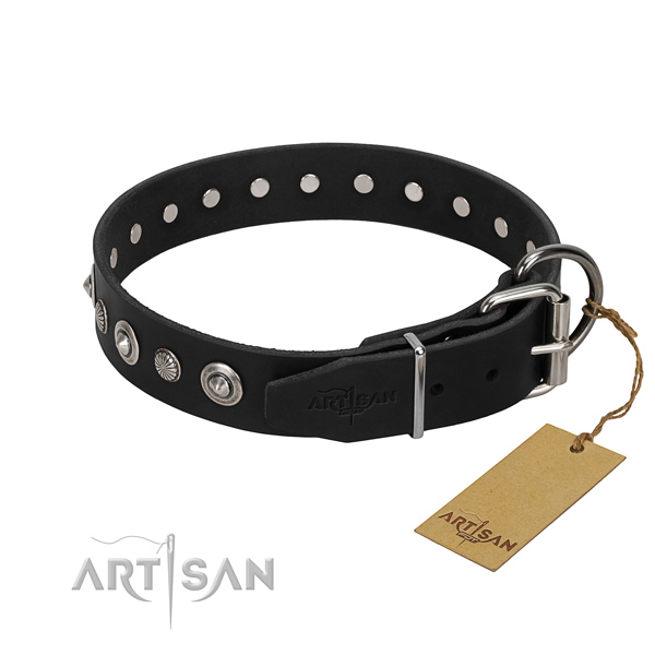 Finest quality natural leather dog collar with fashionable adornments