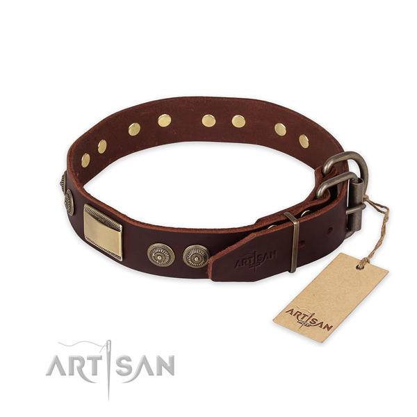 Reliable fittings on full grain natural leather collar for daily walking your four-legged friend