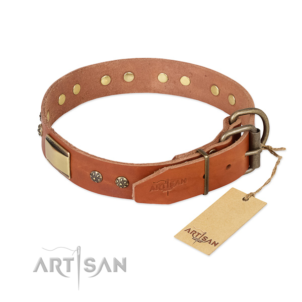 Leather dog collar with durable traditional buckle and adornments