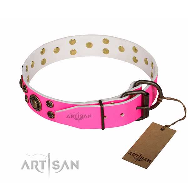 Daily use studded dog collar of strong genuine leather