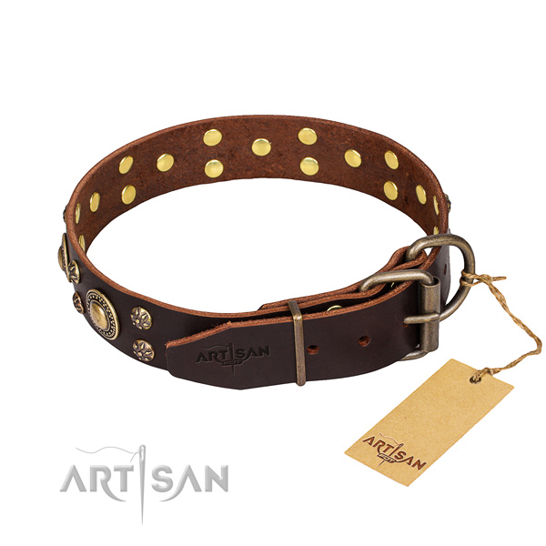 Walking decorated dog collar of strong full grain genuine leather