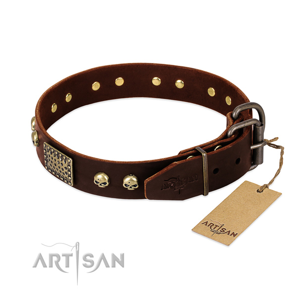 Durable decorations on everyday walking dog collar