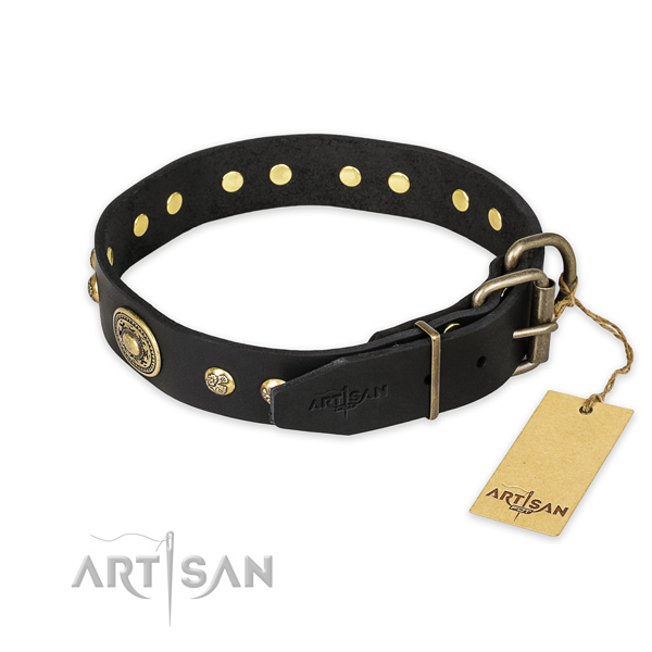 Rust resistant traditional buckle on leather collar for fancy walking your four-legged friend