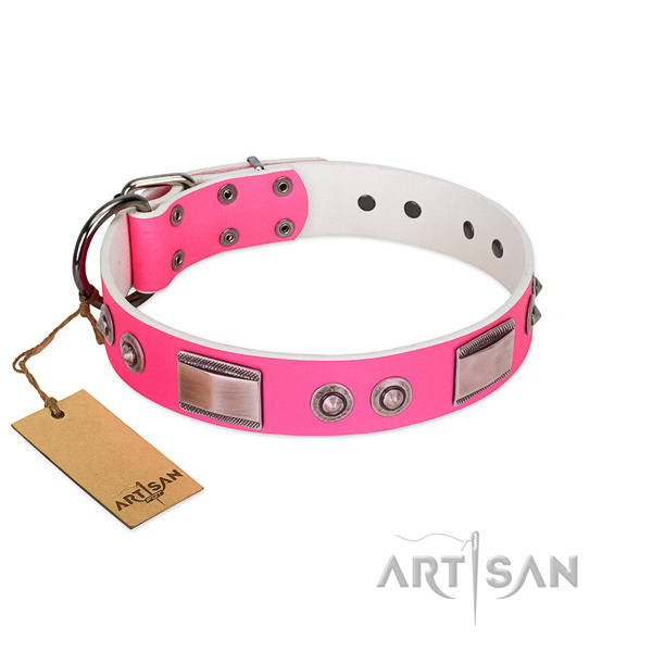 Easy adjustable dog collar of natural leather with adornments