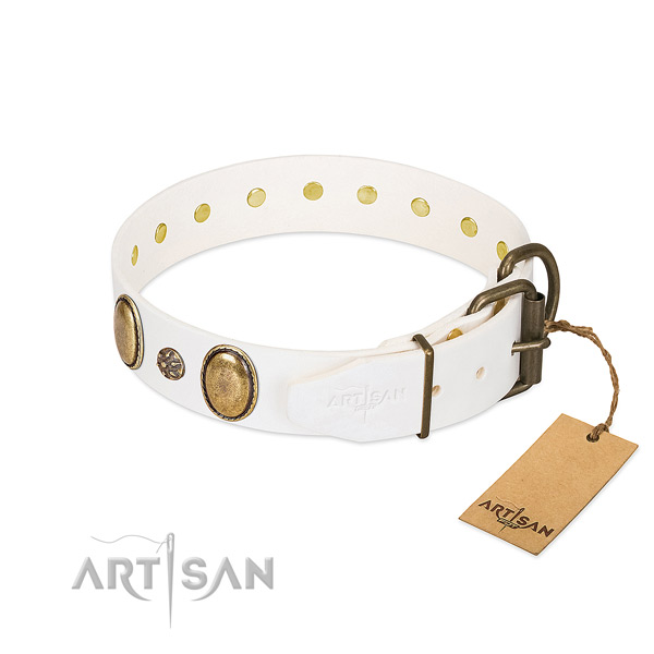Stylish walking top rate leather dog collar