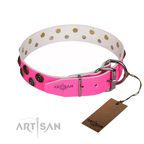 Daily use adorned dog collar of top quality full grain genuine leather