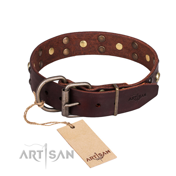 Walking decorated dog collar of reliable full grain natural leather