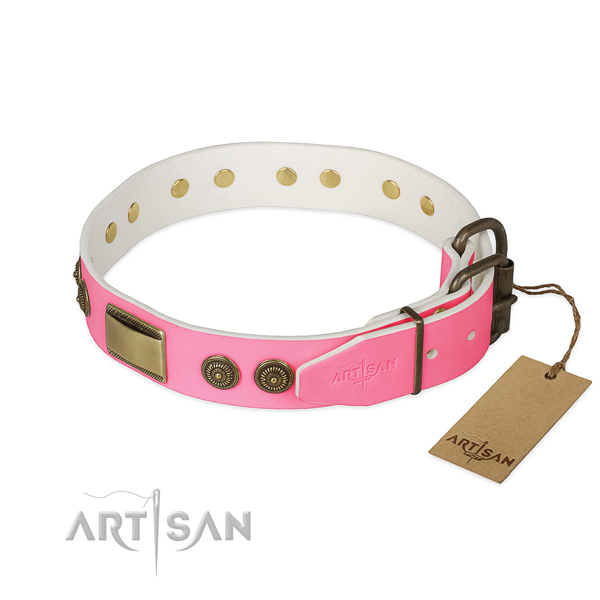 Corrosion resistant decorations on everyday use dog collar