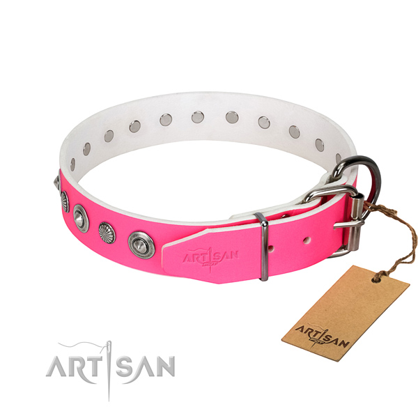 Fine quality full grain natural leather dog collar with awesome decorations