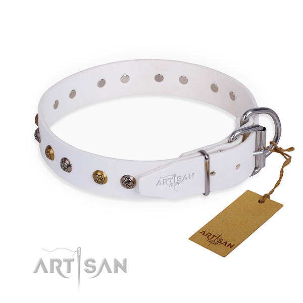 Full grain natural leather dog collar with designer rust resistant adornments