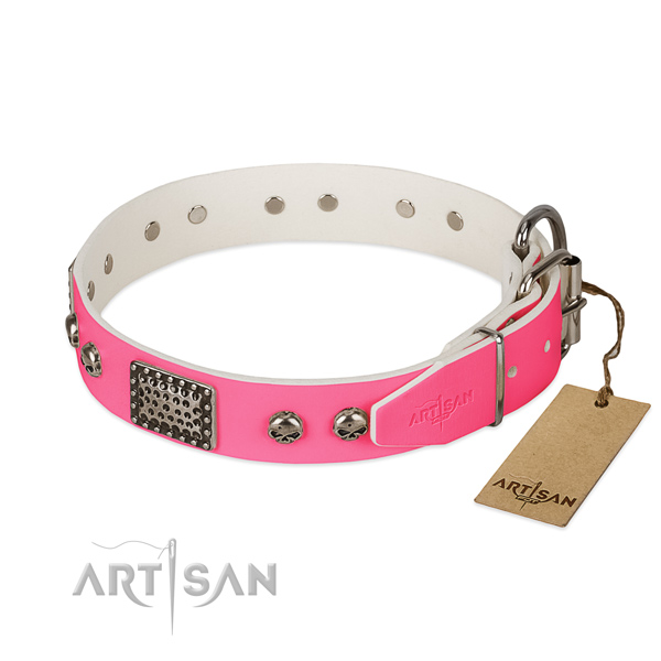 Corrosion resistant adornments on handy use dog collar