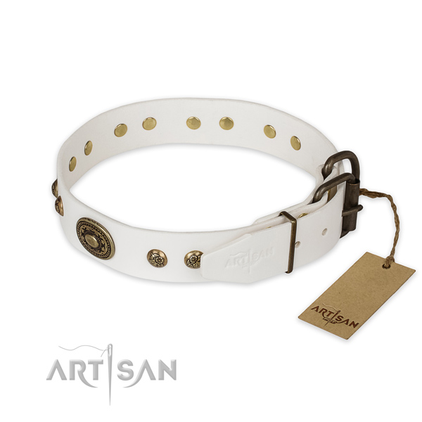 Rust resistant buckle on leather collar for basic training your doggie