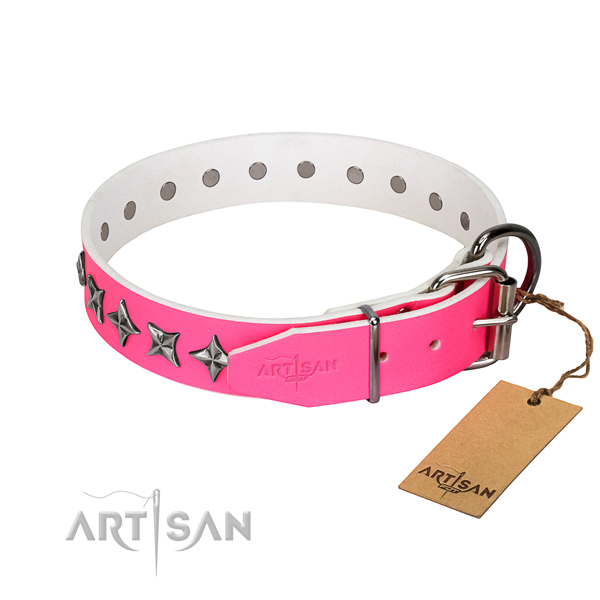 Durable full grain natural leather dog collar with impressive adornments