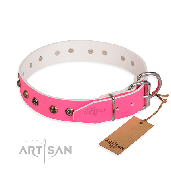 Full grain natural leather dog collar with unusual strong studs