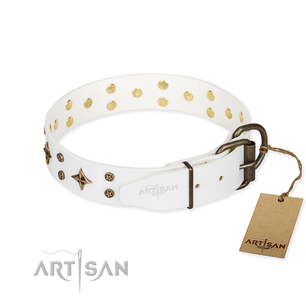 Daily walking embellished dog collar of strong leather