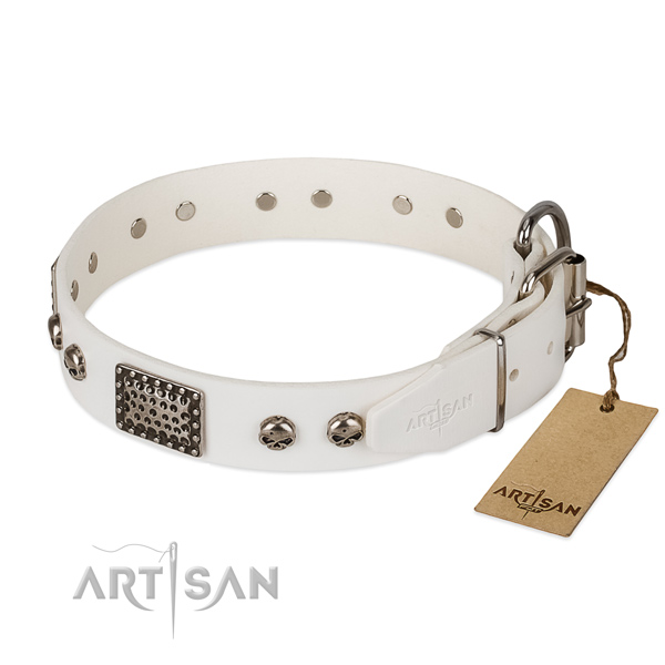 Corrosion proof adornments on comfy wearing dog collar