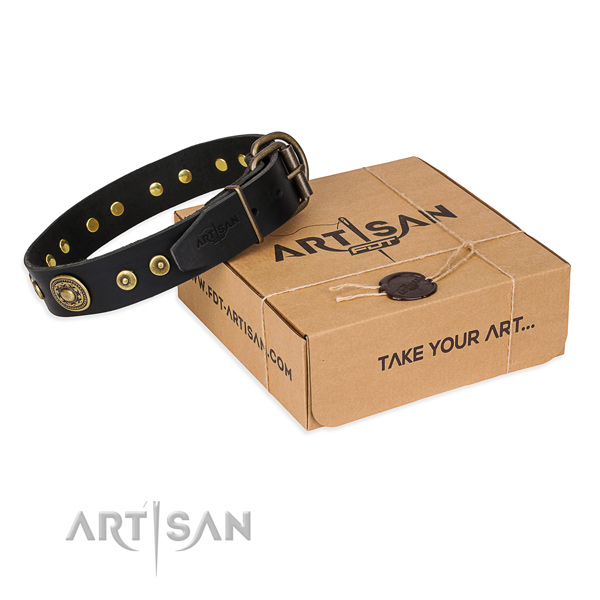 Full grain genuine leather dog collar made of soft material with reliable fittings