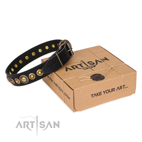 Top notch full grain leather dog collar crafted for walking
